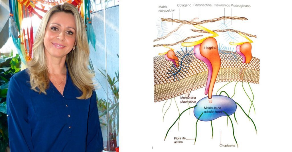 biotensegridade e mecanostransducao porque e importante para terapeutas2 Instituo Actiuni Andréia Kisner