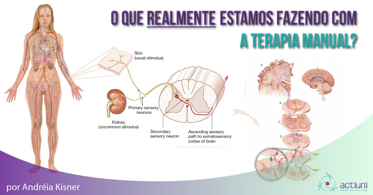 posts blog o que estamos fazendo com a terapia manual com andreia kisner actiuni Instituo Actiuni Andréia Kisner